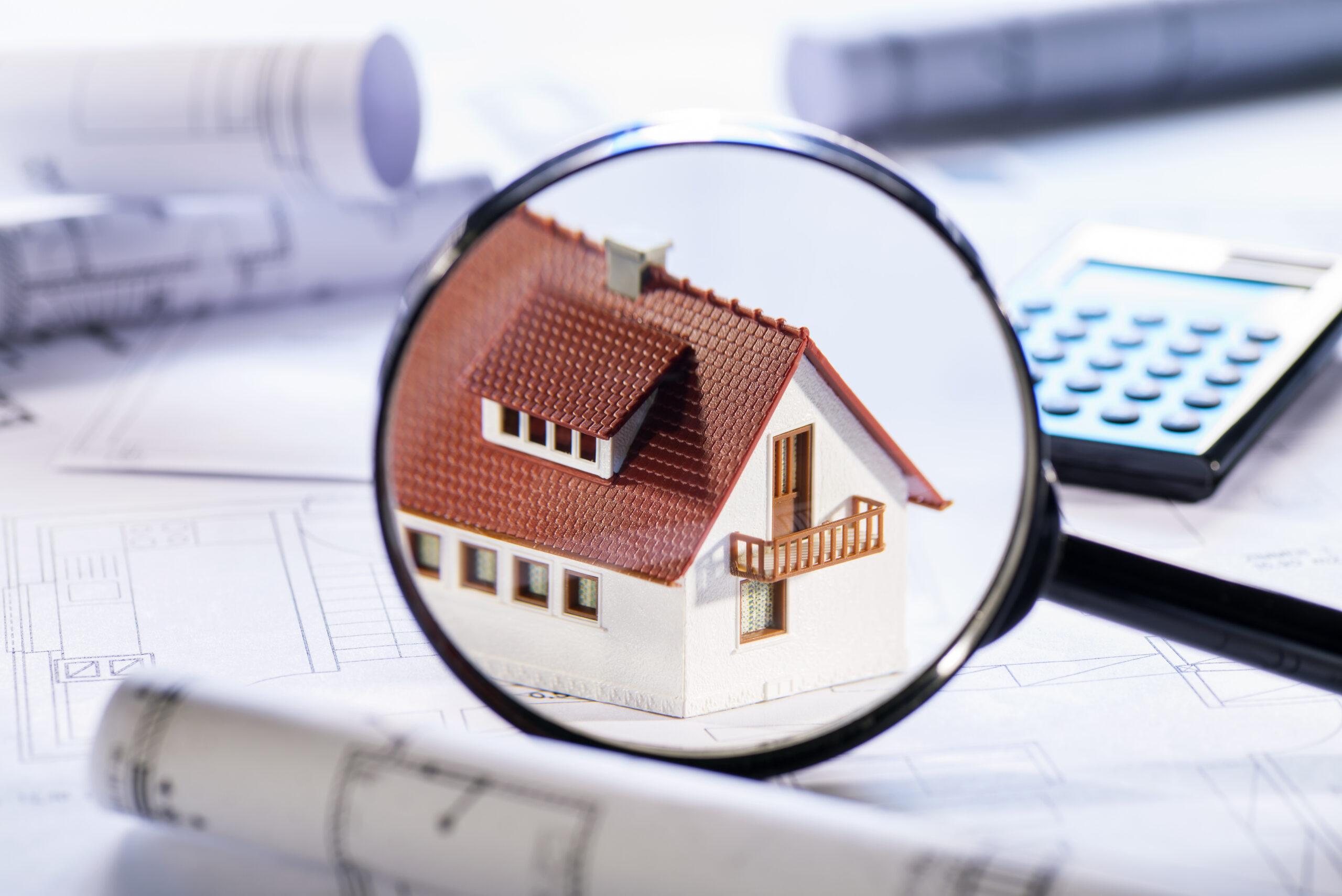 property distribution